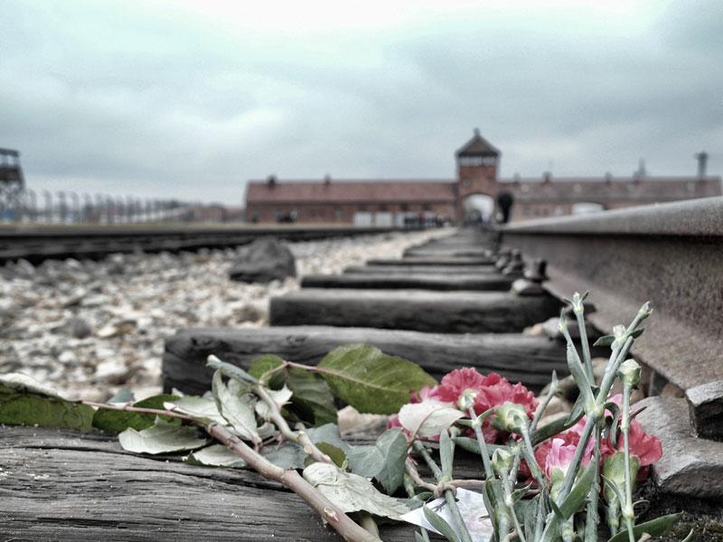 Auschwitz_018